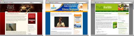 Wordpress Theme Examples